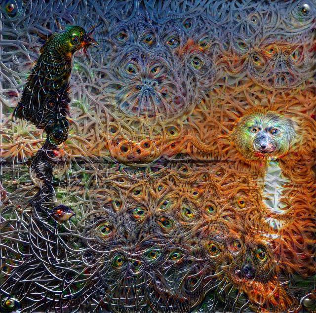 'Structured Chaos' Deep Dream 1st iteration